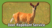 Deer Repellant Service